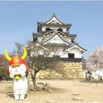 彦根城はいつ誰がつくった?別名や人気スポットも紹介!